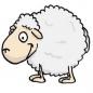 Mouton_Beau