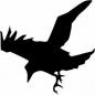 RavenRant