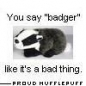 AngryBadger