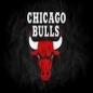 Go_Bulls