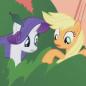 shampoo pony